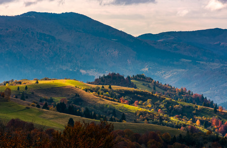 agricultural fields on hillside in evening autumn. lovely mountainous countryside landscape