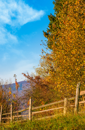 wooden fence near forest in mountains. lovely autumnal countryside nature background in the morning Stock Photo