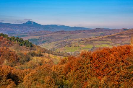 紅葉の田園地帯の丘の上の赤い葉を持つフォレスト。遠くの青い山の尾根の豪華な高いピークと山岳地帯の景色 写真素材