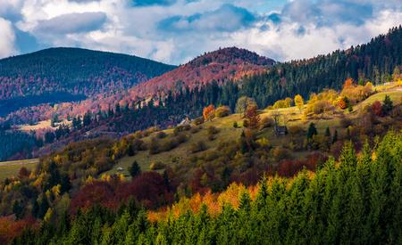 가 [NULL]에는 포리스트와 언덕에 마입니다. 좋은 날씨와 함께 화려하고 화려한 산악 풍경 스톡 콘텐츠