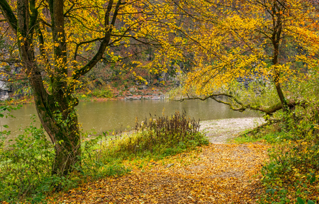lovely autumnal scenery with yellow trees on rocky shore. river flows at the foot of a hill with rocky cliff Stock Photo - 85415212