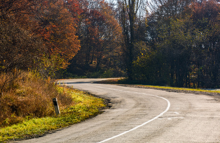 winding road through the forest with red foliage. beautiful autumn weather Stock Photo
