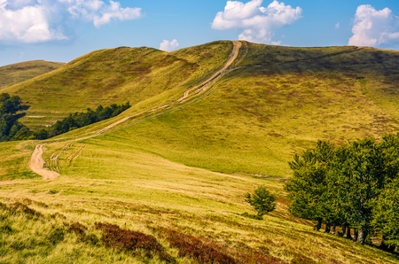 footpath through hills with forest. beautiful nature scenery in fine early autumn weather Stock Photo