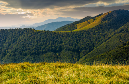 mountain ridge with forest on hills at sunrise. beautiful nature scenery in early autumn Stock Photo