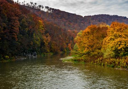 秋の山の森林川。黄ばんだ木と岩の崖の素敵な草で覆われた海岸。豪華な自然の秋風景。高い視点 写真素材