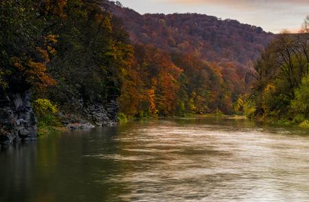 秋の山の森林川。黄ばんだ木と岩の崖の素敵な草で覆われた海岸。豪華な自然の秋風景 写真素材