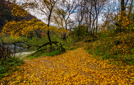 lovely autumnal scenery with yellow trees on rocky shore. river flows at the foot of a hill with rocky cliff Stock Photo - 86041416