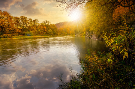 秋の山の森林川。黄ばんだ木と岩の崖の素敵な草で覆われた海岸。落日の豪華な自然紅葉風景