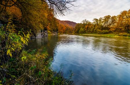 秋の山の森林川。黄ばんだ木と岩の崖の素敵な草で覆われた海岸。日の出豪華な自然の秋風景
