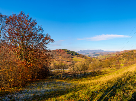 trees with red foliage in autumnal countryside with mountain ridge in a distance. beautiful landscape in mountains