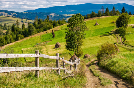 rural fields behind the wooden fence on hills in mountainous area. lovely countryside landscape in autumn