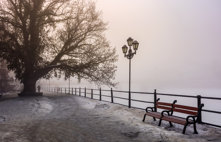 city embankment in foggy winter morning. beautiful european cityscape  scenery with tree, lantern and wooden bench. Reklamní fotografie