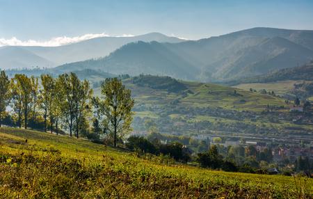 丘の中腹に道路でポプラの木の範囲。山間の田園地帯の美しい朝