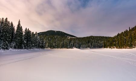 雪のトウヒ林で凍った湖。ムーディーズの日の出山の豪華な冬の風景 写真素材