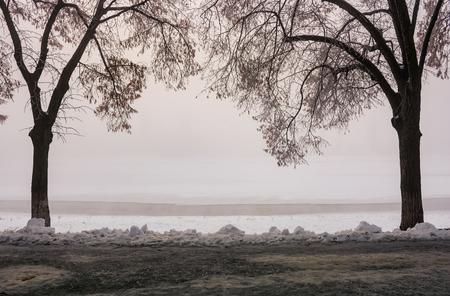 Longest linden alley in europe. Winter scenery on the river embankment at foggy sunrise in Uzhgorod, Ukraine.