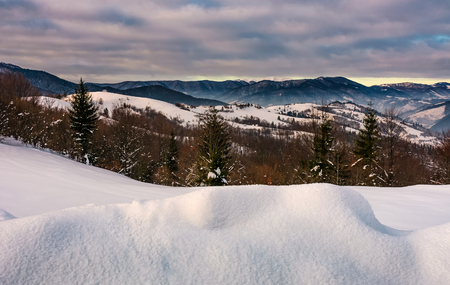 snowy hillsides with forest in mountainous countryside. beautiful morning winter scene Stock Photo