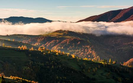 구름이 언덕 위로 올라가는 구름, 일출 산의 화려한 단풍 풍경 스톡 콘텐츠