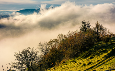 huge fog rise above the hillside, lovely autumnal scenery in mountains at sunrise Stock Photo