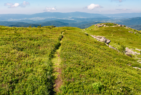 path through grassy meadow to huge boulders. beautiful mountainous landscape on summer morning Stock Photo