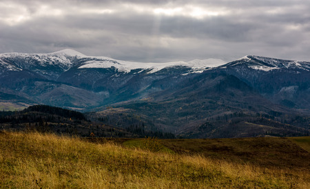 snowy mountain ridge in late autumn. hills with forest and weathered grassy meadows. gloomy cold weather with overcast moody sky Stock Photo