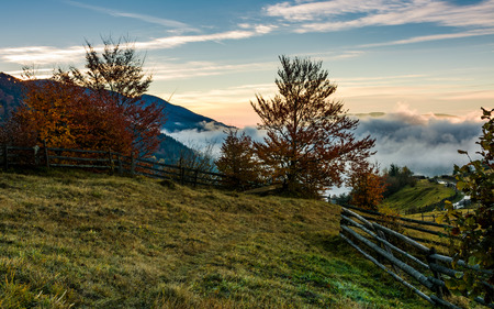 rural scenery with fence and trees at foggy sunrise in mountains. gorgeous autumn landscape with rising clouds