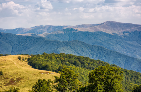 alpine grassy meadow in autumnal Carpathians. lovely landscape of TransCarpathia with beech forest on hills and gorgeous Svydovets mountain ridge in a distance. view from Krasna alpine mountain ridge Stock Photo