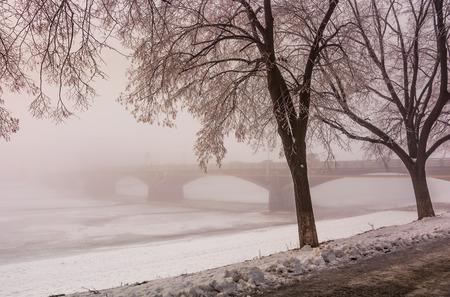 langste in Europa linde steegje op de winter mistig en ijzig ochtend. Geheimzinnig landschap dichtbij de Masaryk-brug in Uzhgorod, de Oekraïne Stockfoto