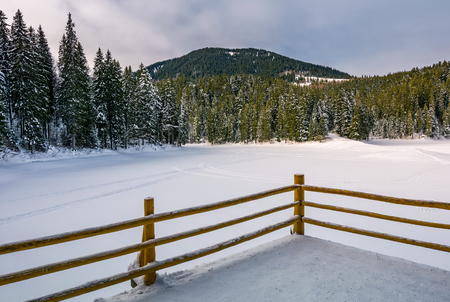 wooden pier on snow covered forest lake in mountains. gorgeous winter landscape in soft morning light