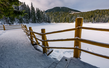 wooden pier on snow covered forest lake Synevyr in Carpathian mountains. gorgeous winter landscape of a popular tourist attraction in soft morning light.