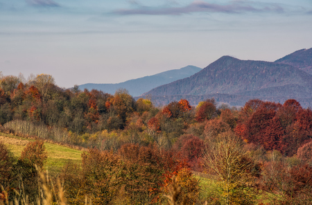 ridge with peaks above hillside with forest. lovely mountainous background in late autumn Stock Photo - 87325312