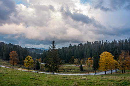 winding road through forest in autumn evening with gorgeous cloudy sky. beautiful nature scenery