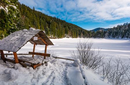 눈 덮인 겨울 가문비 나무 숲에서 나무 bower입니다. 눈 근처 아름 다운 산악 풍경 덮여 얼어 붙은 호수 Synevyr 스톡 콘텐츠