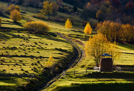 haystack behind the fence near the path on hillside in autumn. beautiful countryside scenery with yellow trees Stock Photo
