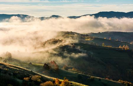 가을에 굴러가는 언덕 위에 두꺼운 안개가 자욱하다. 놀라운 일출 산악 시골 풍경
