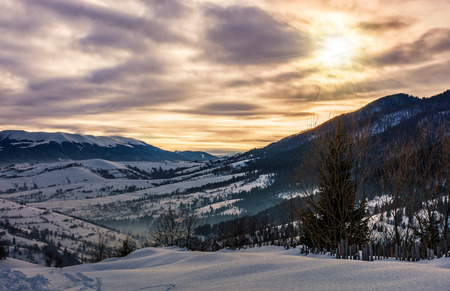 cloudy sunrise over the mountainous rural area in winter. beautiful countryside landscape with naked trees on snowy hillsides of Carpathian mountain ridge Stock Photo