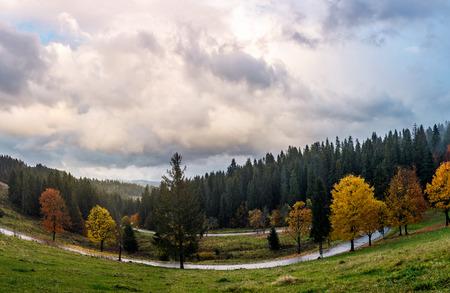 Serpentin durch den Wald im Herbst. schöne bergige Landschaft mit wunderschönen Wolkengebilde am Abend. kreative Verzerrung angewendet. schöne Reise Hintergrund Standard-Bild - 87654402