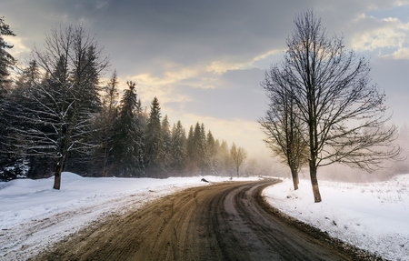 winding road through forest in winter. beautiful nature scenery with naked trees on foggy and cloudy sunrise. lovely transportation background. Stock Photo