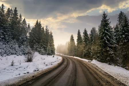 winding road through winter spruce forest. beautiful nature scenery on foggy and cloudy morning. lovely transportation background. Stock Photo