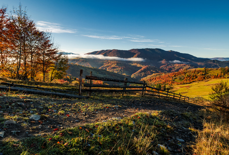 gorgeous foggy morning in mountainous countryside. beautiful landscape with wooden fence and trees with yellow foliage near the rural fields on hillsides in late autumn Stock Photo