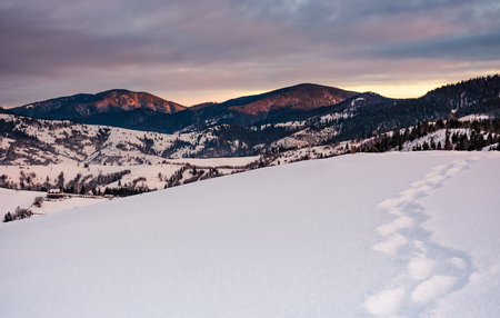 footpath on snowy hillside in mountains at sunrise. gorgeous winter landscape in Carpathians with cloudy sky