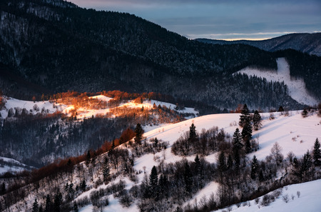 spot of morning light on hillside with forest. beautiful mountainous scenery in winter