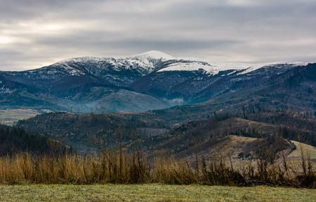 Grasige Wiese in Bergen mit schneebedeckten Gipfeln. wunderschöne und ungewöhnliche Landschaft im Spätherbst Standard-Bild - 87837482