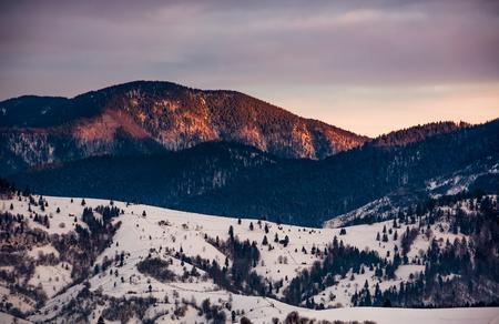 雪の山の丘は、美しい赤みがかった日の出の森。冬の美しい自然の風景 写真素材