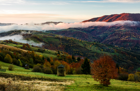 rural area on foggy autumn morning. gorgeous landscape with haystacks on green meadows and colorful trees Stock Photo