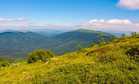 grassy slippery slope of mountain ridge. beautiful landscape in summer