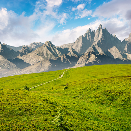 grassy slopes and rocky peaks composite. gorgeous summer landscape with magnificent mountain ridge over the pleasing green meadows. lovely surreal fantasy scenery