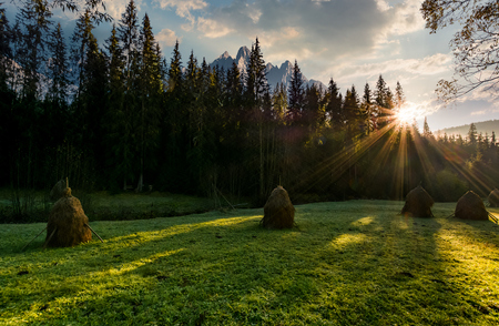 haystacks on the grassy forest meadow in High Tatra mountains. Beautiful rural scenery composite in Slovakia at sunrise Stock Photo