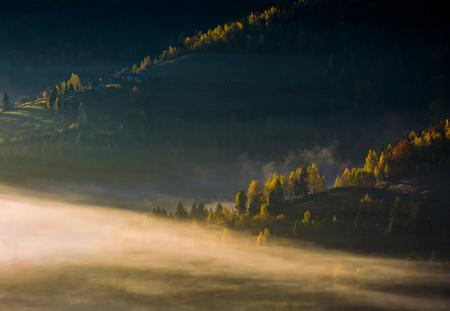 Rolling Hills im Herbst Morgen Nebel. schöne ländliche Landschaft Standard-Bild - 88679194