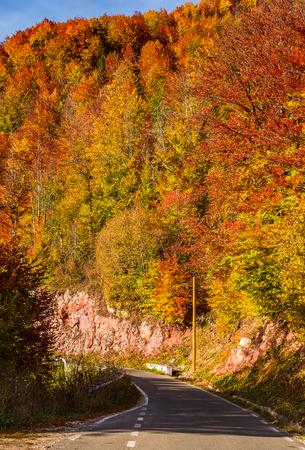 가파른 경사면 숲을 통해도. 가을의 아름다운 교통 풍경
