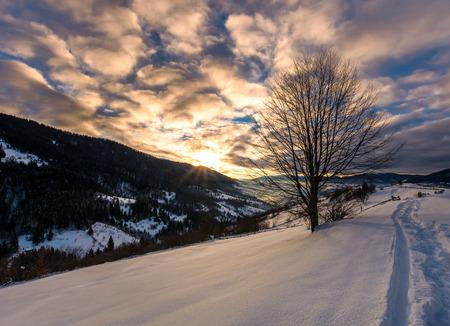 雪に覆われた田園丘の中腹を歩道。山岳地帯の冬の田園地帯で豪華な日の出